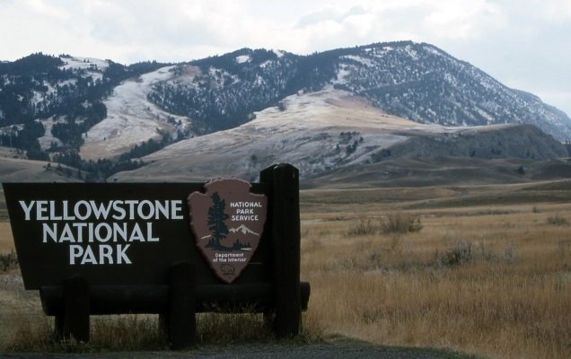 Yellowstone National Park 15